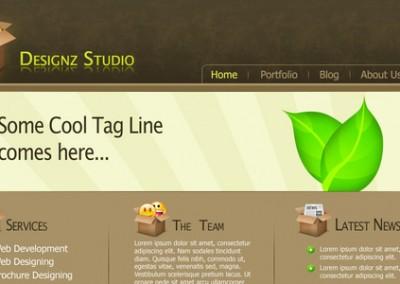 Designz Studio PSD Template